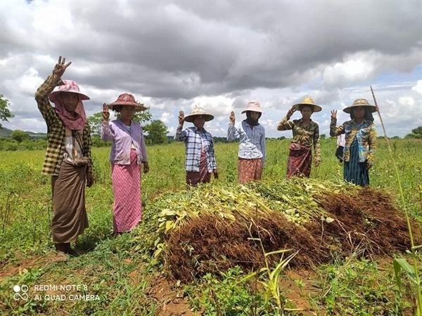 마궤주 낮마옥시(Natmauk Township)의 한 마을에서 참깨 농부들이 이끄는 반독재 시위