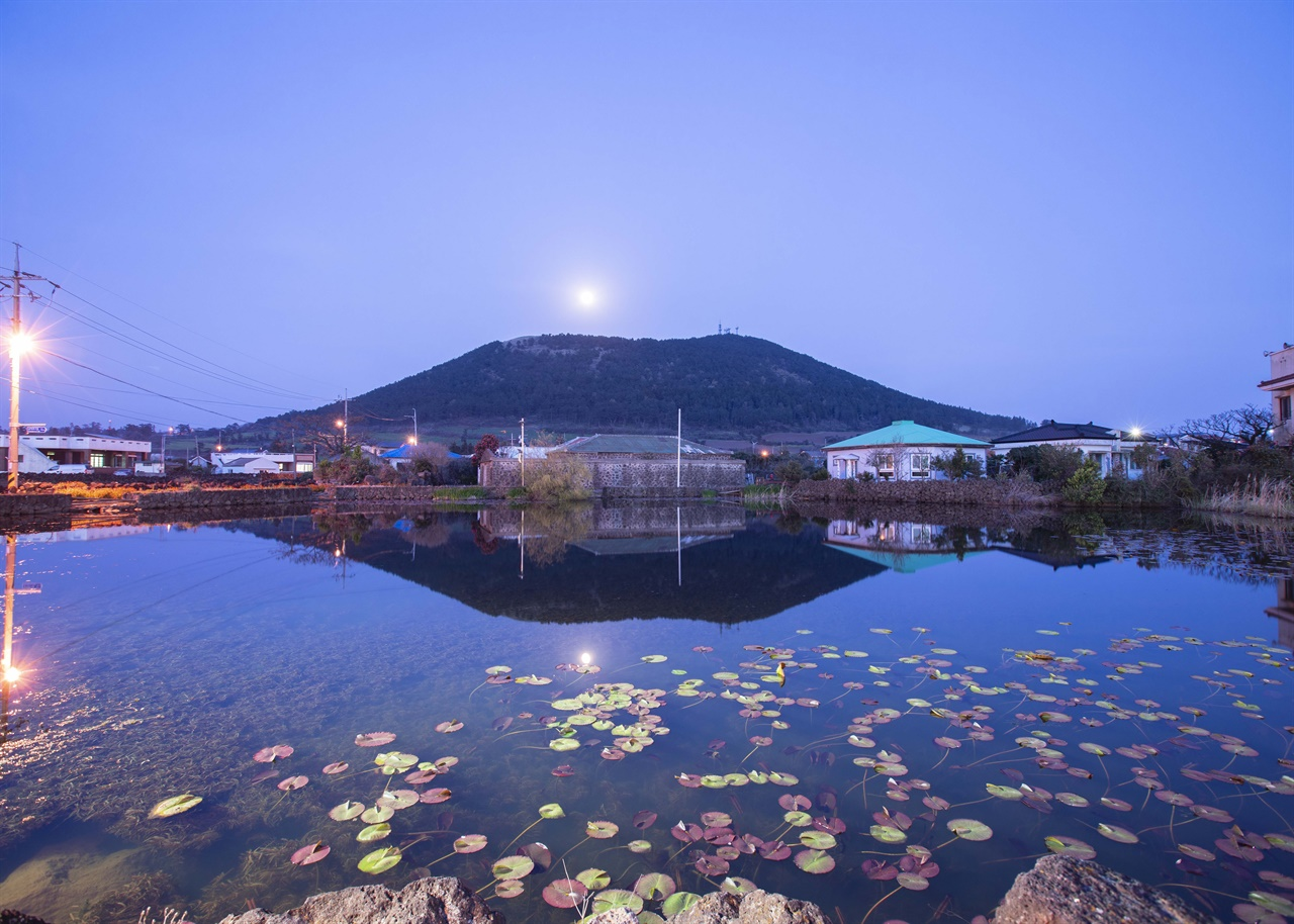 연못에 비친 금오름 효리네 민박에 소개돼 유명세를 치른 금오름의  아름다운 자태.