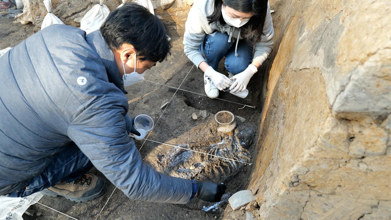 신라왕성 월성 발굴현장 국립경주문화재연구소 학예연구사가 월성 서성벽 구간에서 발견된 인골에 경화처리를 하고 있다.