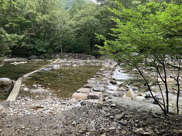 청도 운문산 사리암 생태탐방로 옆 계곡 모습