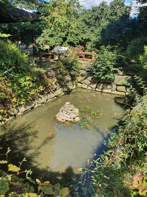 육괴정 앞에 자리잡은 연못 남당의 모습 육괴정 앞에는 남당이라는 조선시대 정원의 모습을 지닌 연못이 남아있다.
