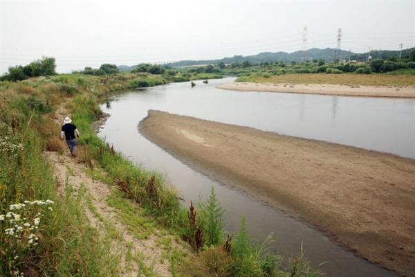 미호천은 모래강의 원형을 보전한 대표적인 하천이다. 사진은 청주시 신대동 일원 미호천에 형성된 모래톱 모습