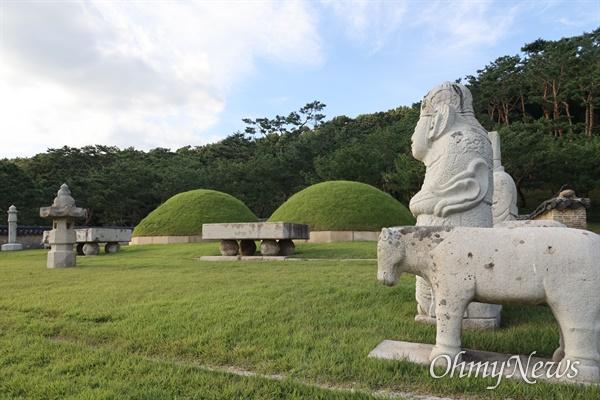 조선왕릉은 인류의 문화유산으로서 탁월한 보편적 가치를 인정받아 '세계 문화 및 자연유산의 보호에 관한 협약'에 따라 2009년 6월 30일 유네스코 세계유산으로 등재되었다.