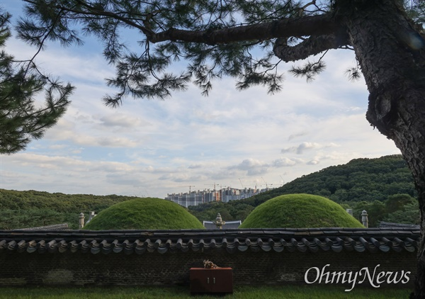 김포장릉 앞으로 완공을 앞둔 아파트가 들어서 경관을 가리고 있다.
