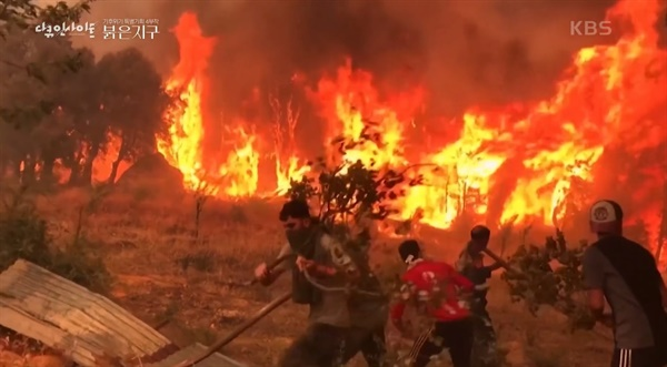 KBS 2TV <다큐인사이트> '붉은 지구' 4부 한 장면