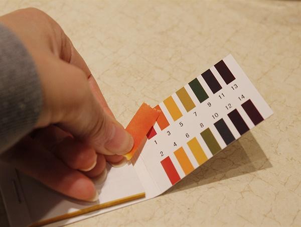 산도는 리트머스 시험지로 쉽게 측정할 수 있다. 식초는 pH 2.5~3.5 정도면 적당하다