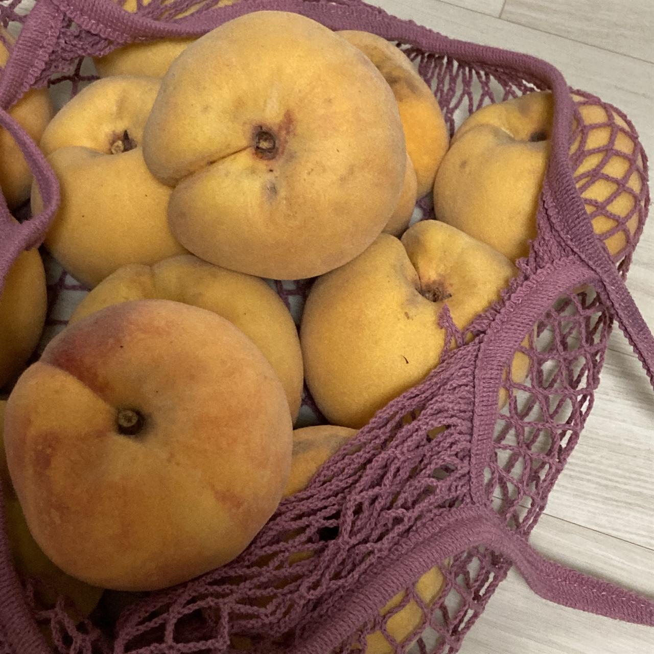 친환경 네트 백에 한가득 담아온 양홍장 복숭아