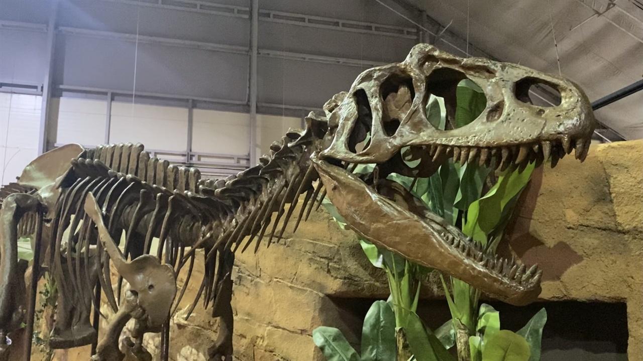 진품 198점의 화석이 전시된 전시관에서는 세계 최초로 대중에게 공개된 알로사우루스 화석을 볼 수 있다.
