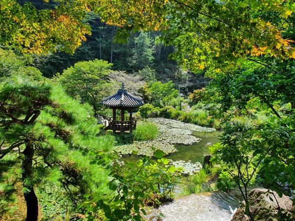 곡선과 여백으로 표현되는 한국정원의 진수를 보여주는 장소로 연못의 각도에 따라 각기 다른 풍경을 보여준다.