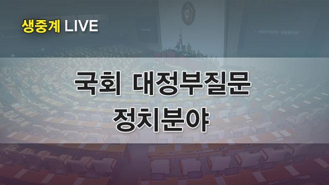 국회 대정부질문 - 정치분야